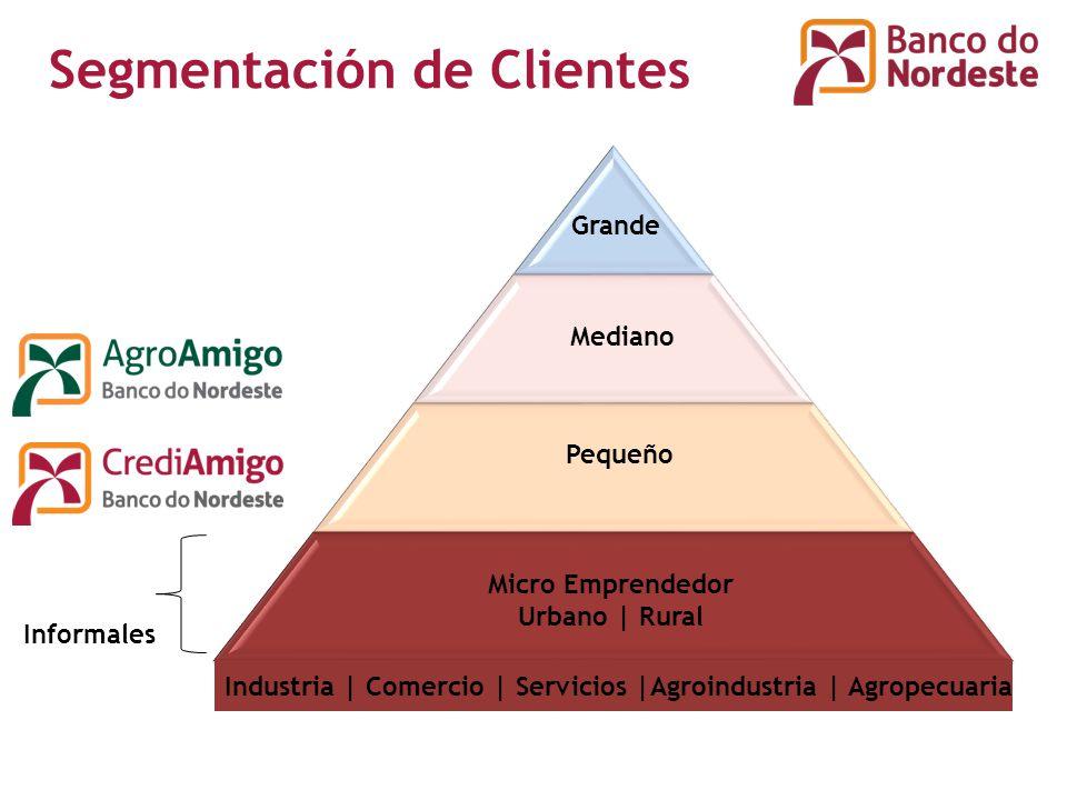 Informales Segmentación de Clientes Grande Mediano Pequeño Micro Emprendedor Urbano | Rural Industria | Comercio | Servicios |Agroindustria | Agropecuaria