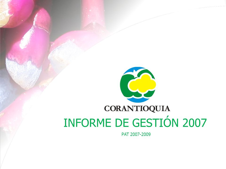 PAT 2007-2009 PROGRAMA VI FORTALECIMIENTO INSTITUCIONAL Para la sostenibilidad financiera, se trabaja en el fortalecimiento y operación de 10 rentas que representen un mayor ingreso para la Corporación.