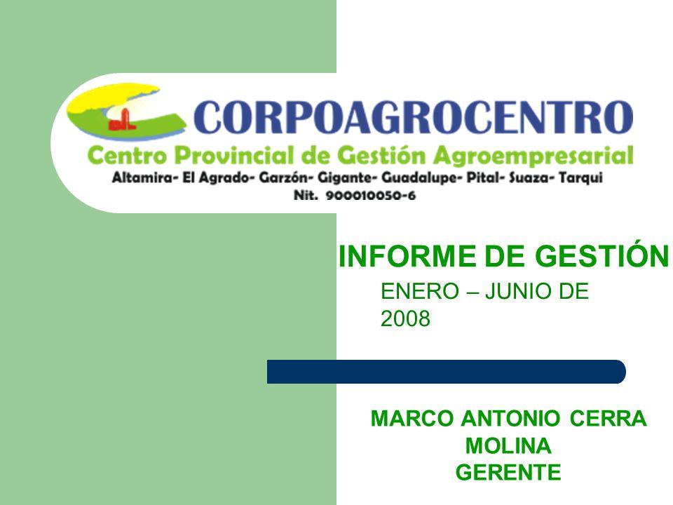 INFORME DE GESTIÓN ENERO – JUNIO DE 2008 MARCO ANTONIO CERRA MOLINA GERENTE