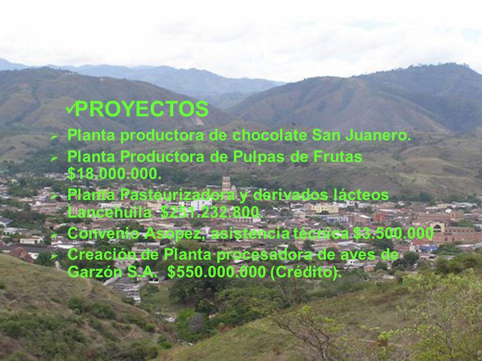 PROYECTOS Planta productora de chocolate San Juanero.