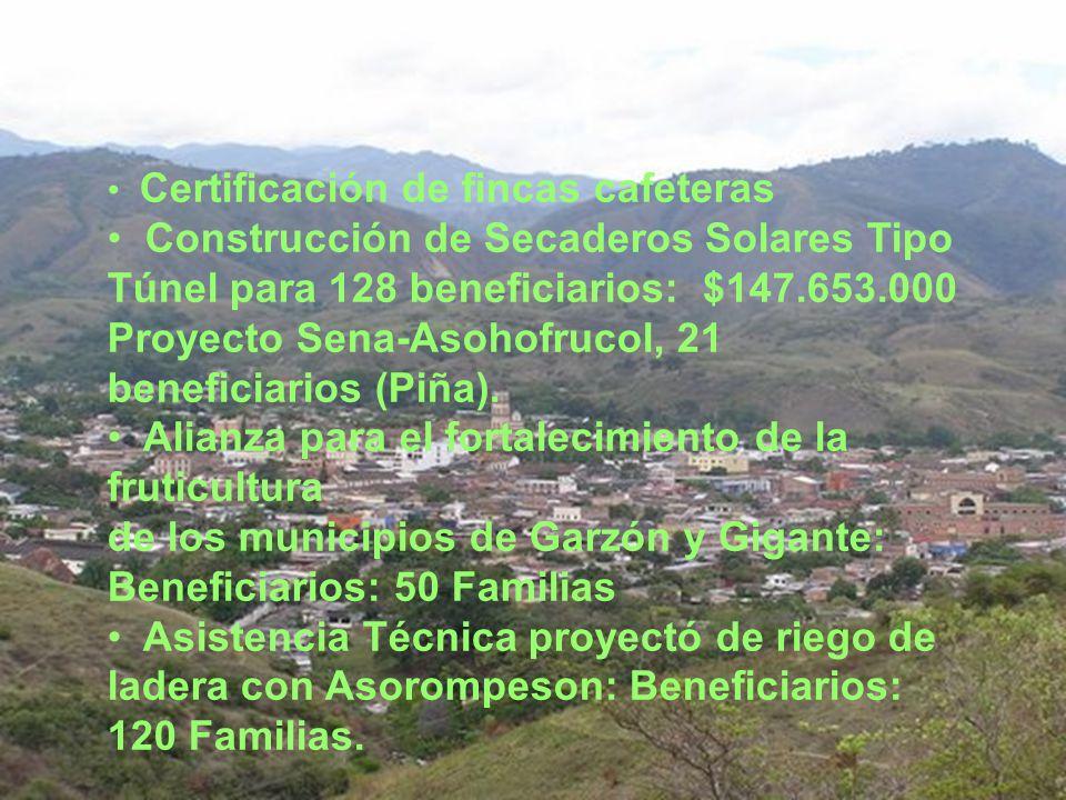 Certificación de fincas cafeteras Construcción de Secaderos Solares Tipo Túnel para 128 beneficiarios: $147.653.000 Proyecto Sena-Asohofrucol, 21 beneficiarios (Piña).