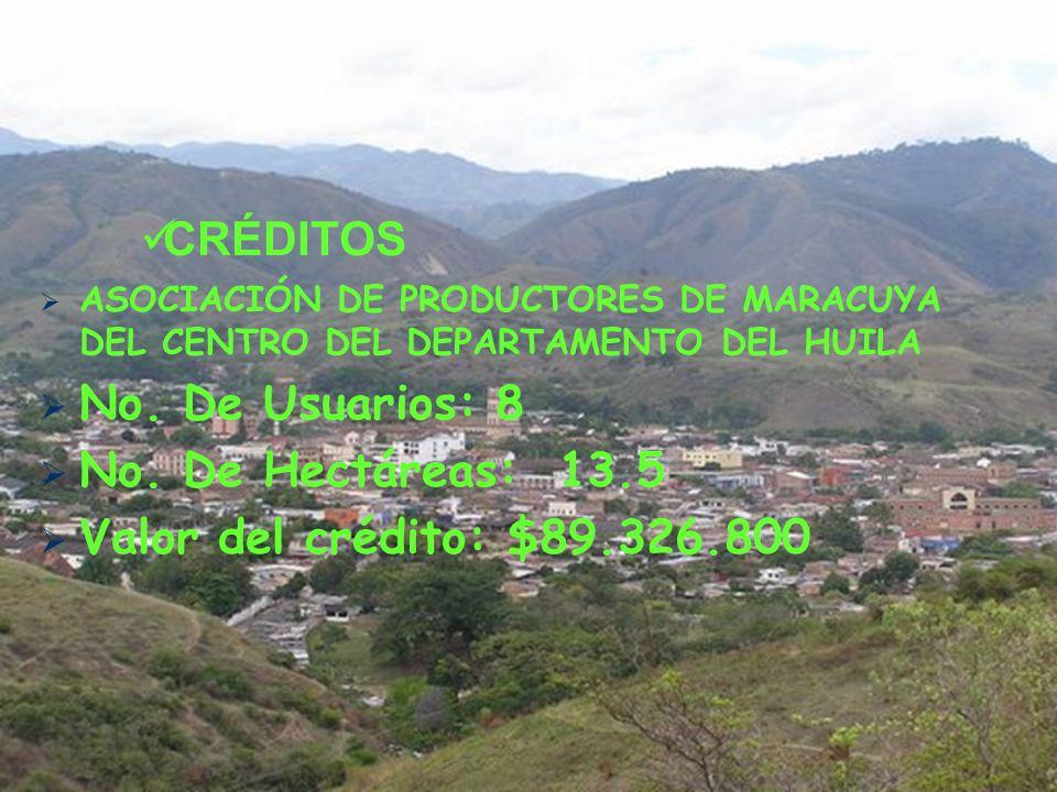 ASOCIACIÓN DE PRODUCTORES DE MARACUYA DEL CENTRO DEL DEPARTAMENTO DEL HUILA No.