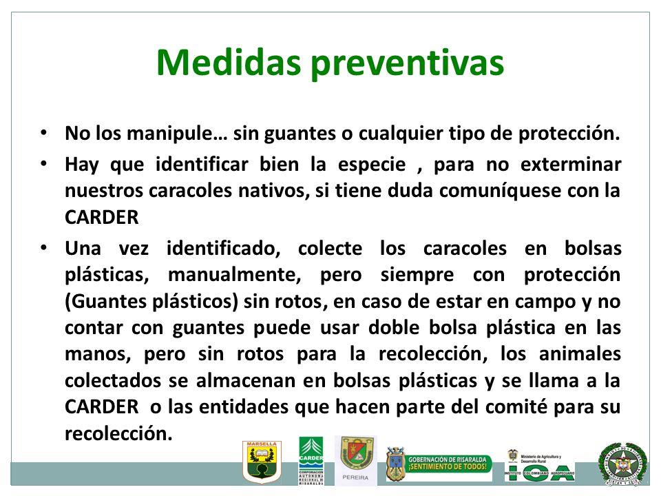 Medidas preventivas No los manipule… sin guantes o cualquier tipo de protección. Hay que identificar bien la especie, para no exterminar nuestros cara