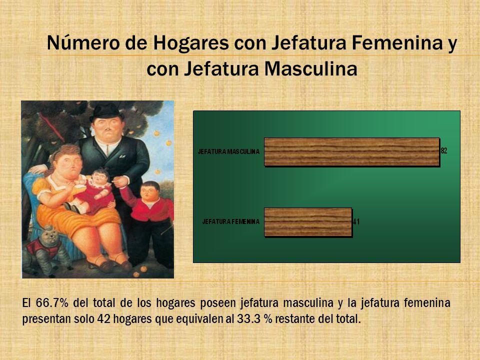 Número de Hogares con Jefatura Femenina y con Jefatura Masculina El 66.7% del total de los hogares poseen jefatura masculina y la jefatura femenina pr