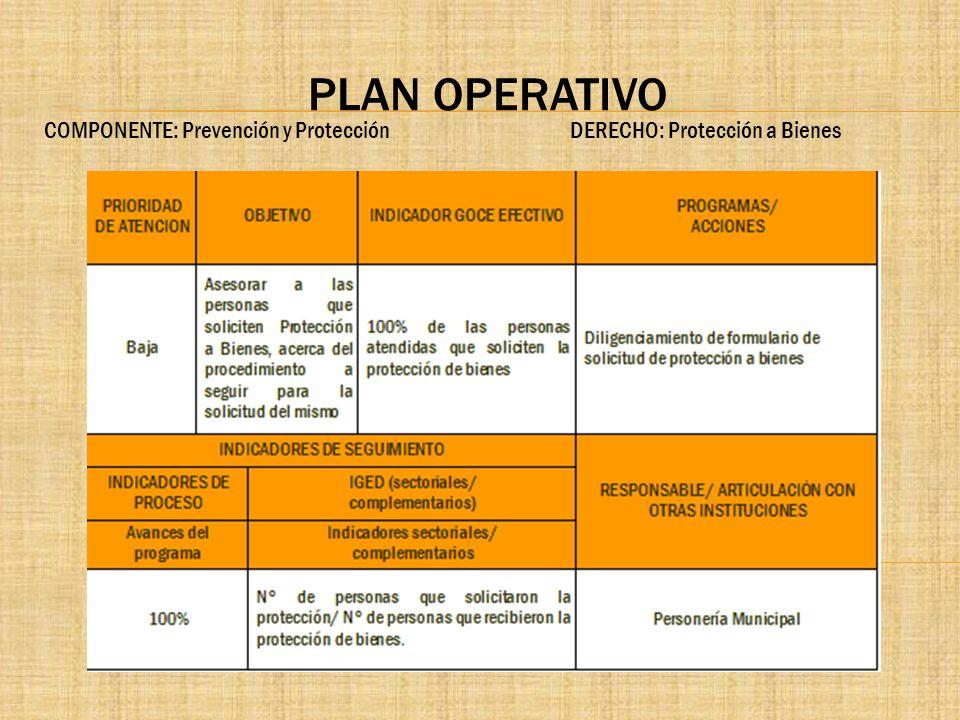 PLAN OPERATIVO COMPONENTE: Prevención y Protección DERECHO: Protección a Bienes