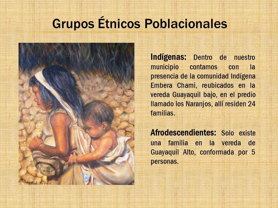 Grupos Étnicos Poblacionales Indígenas: Dentro de nuestro municipio contamos con la presencia de la comunidad Indígena Embera Chami, reubicados en la