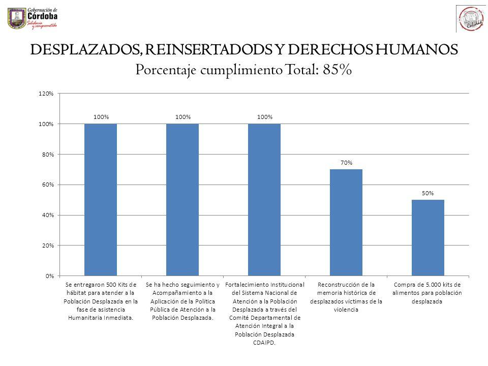 DESPLAZADOS, REINSERTADODS Y DERECHOS HUMANOS Porcentaje cumplimiento Total: 85%
