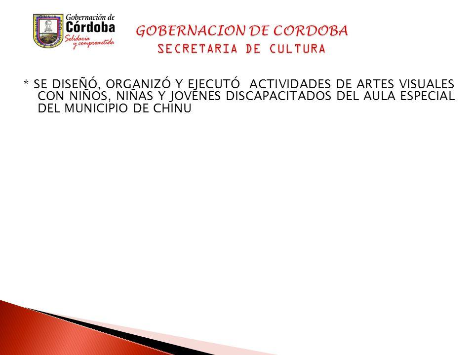 * SE DISEÑÓ, ORGANIZÓ Y EJECUTÓ ACTIVIDADES DE ARTES VISUALES CON NIÑOS, NIÑAS Y JOVENES DISCAPACITADOS DEL AULA ESPECIAL DEL MUNICIPIO DE CHINU