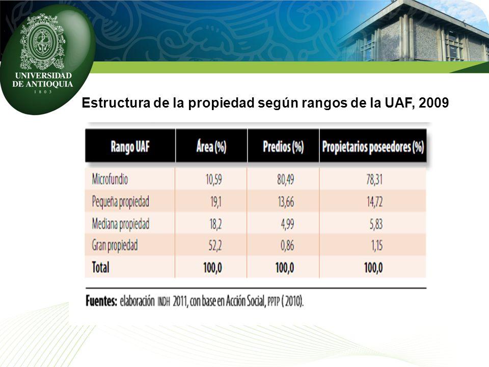 Estructura de la propiedad según rangos de la UAF, 2009