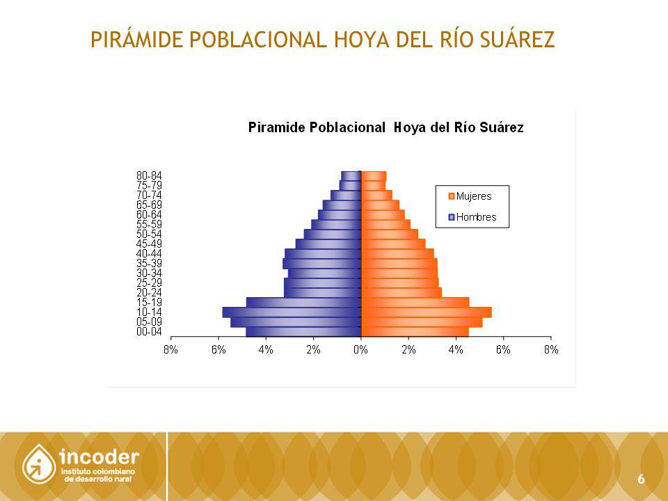 PIRÁMIDE POBLACIONAL HOYA DEL RÍO SUÁREZ 6