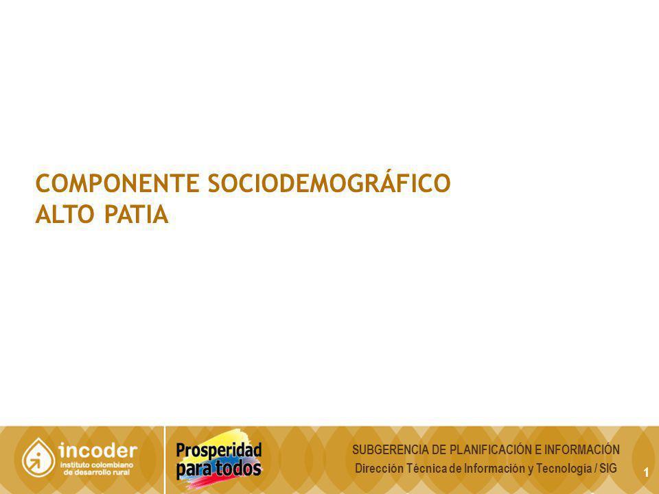 1 COMPONENTE SOCIODEMOGRÁFICO ALTO PATIA SUBGERENCIA DE PLANIFICACIÓN E INFORMACIÓN Dirección Técnica de Información y Tecnología / SIG
