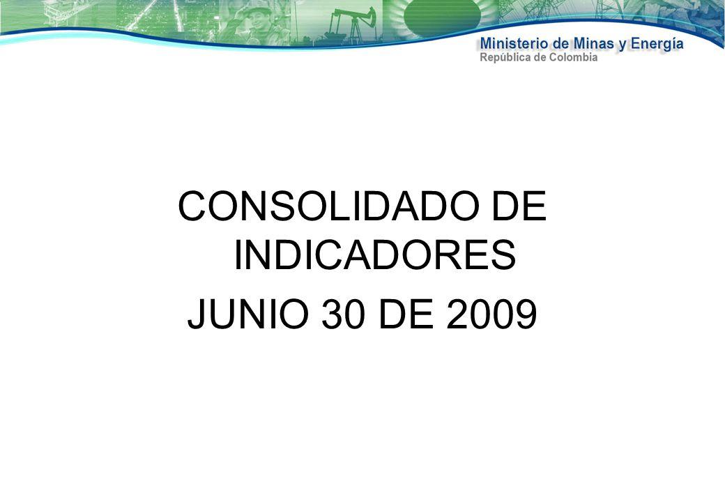 CONSOLIDADO DE INDICADORES JUNIO 30 DE 2009