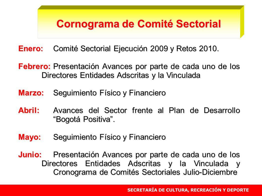 Enero:Comité Sectorial Ejecución 2009 y Retos 2010. Febrero:Presentación Avances por parte de cada uno de los Directores Entidades Adscritas y la Vinc