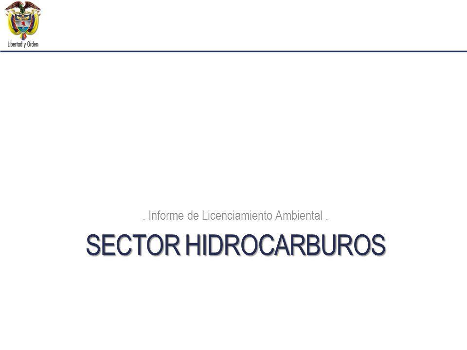 SECTOR HIDROCARBUROS. Informe de Licenciamiento Ambiental.