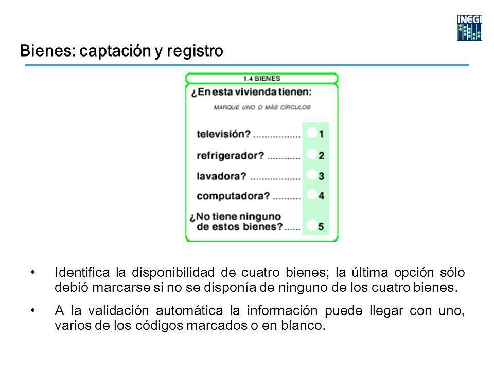 Bienes: captación y registro Identifica la disponibilidad de cuatro bienes; la última opción sólo debió marcarse si no se disponía de ninguno de los cuatro bienes.