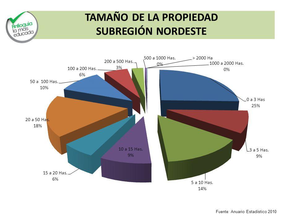 TAMAÑO DE LA PROPIEDAD SUBREGIÓN NORDESTE Fuente: Anuario Estadístico 2010