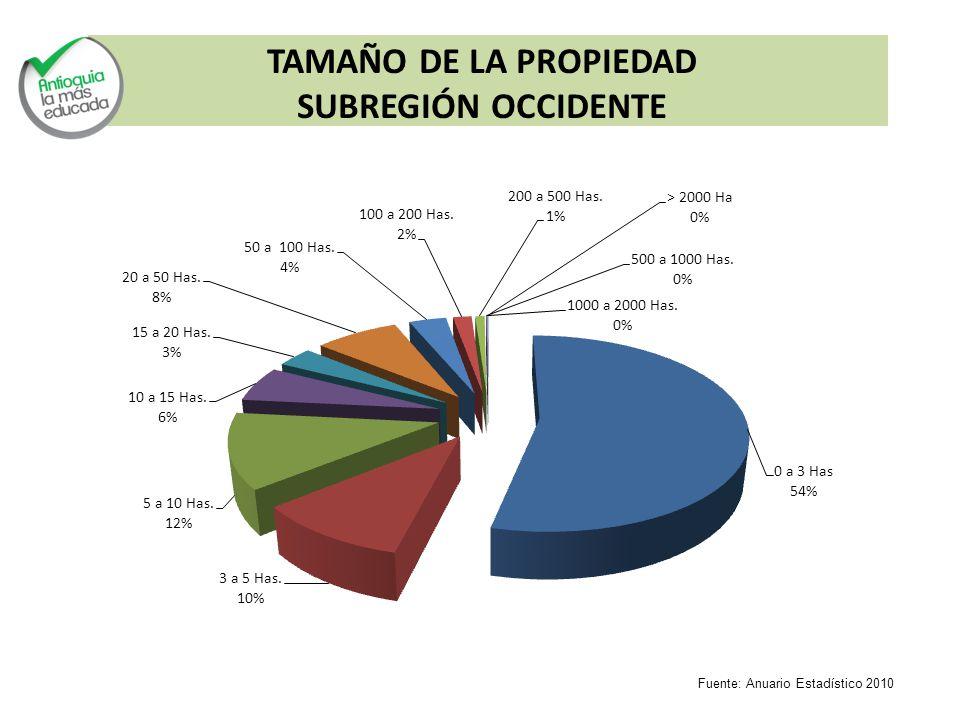 TAMAÑO DE LA PROPIEDAD SUBREGIÓN OCCIDENTE Fuente: Anuario Estadístico 2010