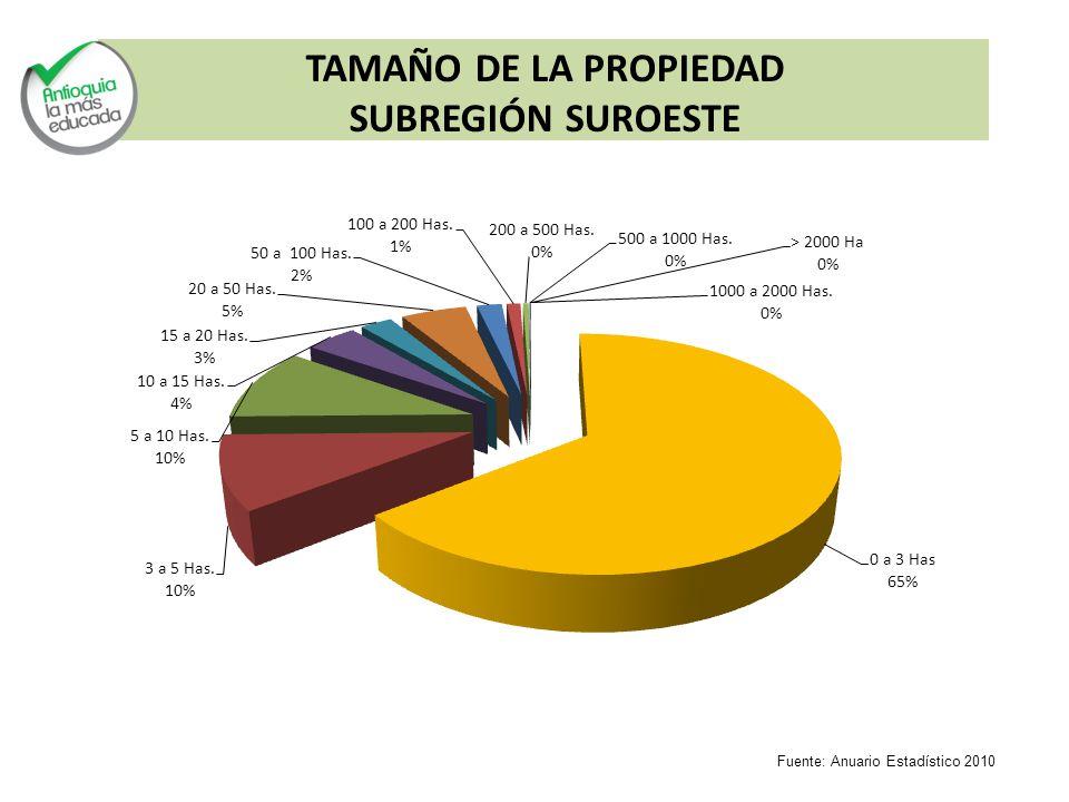 TAMAÑO DE LA PROPIEDAD SUBREGIÓN SUROESTE Fuente: Anuario Estadístico 2010