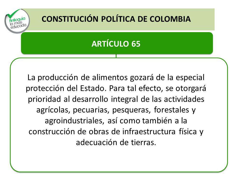 ARTÍCULO 65 La producción de alimentos gozará de la especial protección del Estado. Para tal efecto, se otorgará prioridad al desarrollo integral de l