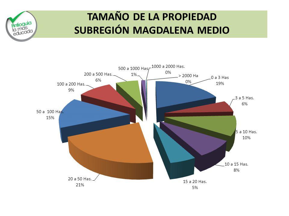 TAMAÑO DE LA PROPIEDAD SUBREGIÓN MAGDALENA MEDIO