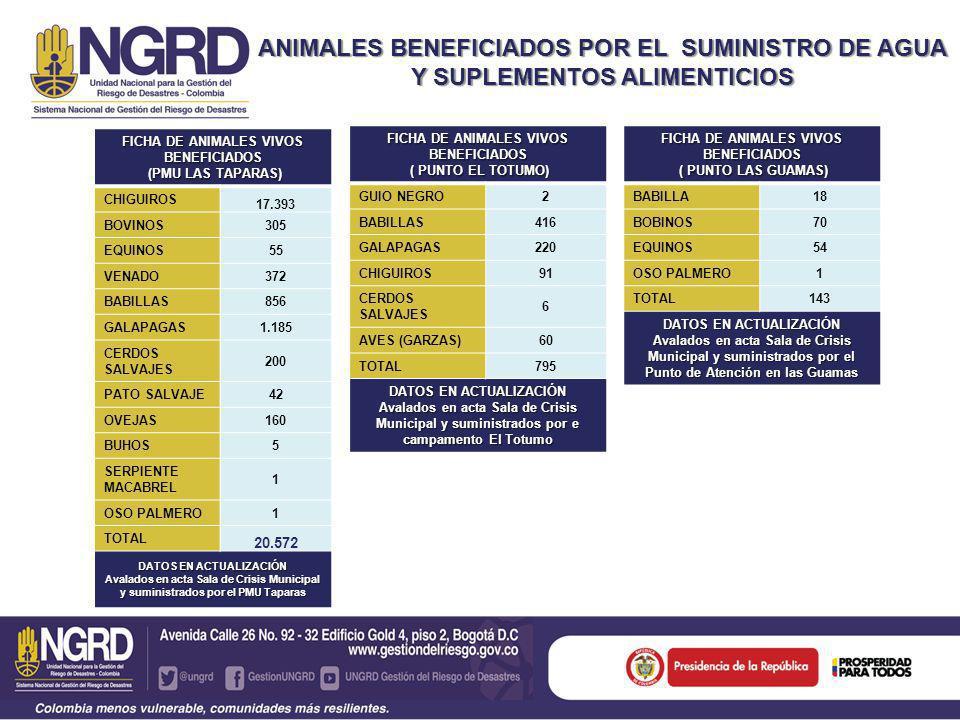 ANIMALES BENEFICIADOS POR EL SUMINISTRO DE AGUA Y SUPLEMENTOS ALIMENTICIOS FICHA TOTAL DE ANIMALES VIVOS BENEFICIADOS MUNICIPIO DE PAZ DE ARIPORO CASANARE VEREDAS 54 CHIGUIROS 17.484 BOVINOS 375 EQUINOS 109 VENADO 372 BABILLAS 1.290 GALAPAGAS 1.405 CERDOS SALVAJES 206 PATO SALVAJE 42 OVEJAS 160 OSO PALMERO 2 GUIO NEGRO 2 BUHOS 5 SERPIENTE MACABREL 1 AVES (GARZAS) 60 TOTAL 21.567 DATOS EN ACTUALIZACIÓN avalados en acta Sala de Crisis Municipal y suministrados por el PMU en la zona de Taparas y Punto de atención en El Totumo y las Guamas.