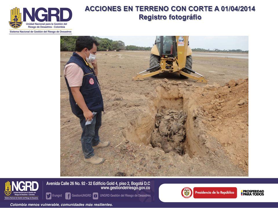 ACCIONES EN TERRENO CON CORTE A 01/04/2014 Registro fotográfio
