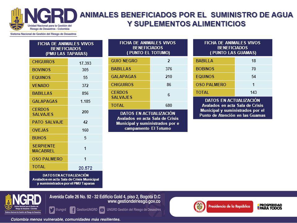 FICHA DE ANIMALES VIVOS BENEFICIADOS ( PUNTO LAS GUAMAS) ( PUNTO LAS GUAMAS) BABILLA18 BOBINOS70 EQUINOS54 OSO PALMERO1 TOTAL143 DATOS EN ACTUALIZACIÓN Avalados en acta Sala de Crisis Municipal y suministrados por el Punto de Atención en las Guamas ANIMALES BENEFICIADOS POR EL SUMINISTRO DE AGUA Y SUPLEMENTOS ALIMENTICIOS FICHA DE ANIMALES VIVOS BENEFICIADOS (PMU LAS TAPARAS) (PMU LAS TAPARAS) CHIGUIROS 17.393 BOVINOS305 EQUINOS55 VENADO372 BABILLAS856 GALAPAGAS1.185 CERDOS SALVAJES 200 PATO SALVAJE42 OVEJAS160 BUHOS5 SERPIENTE MACABREL 1 OSO PALMERO1 TOTAL 20.572 DATOS EN ACTUALIZACIÓN Avalados en acta Sala de Crisis Municipal y suministrados por el PMU Taparas FICHA DE ANIMALES VIVOS BENEFICIADOS ( PUNTO EL TOTUMO) ( PUNTO EL TOTUMO) GUIO NEGRO2 BABILLAS376 GALAPAGAS210 CHIGUIROS86 CERDOS SALVAJES 6 TOTAL680 DATOS EN ACTUALIZACIÓN Avalados en acta Sala de Crisis Municipal y suministrados por e campamento El Totumo