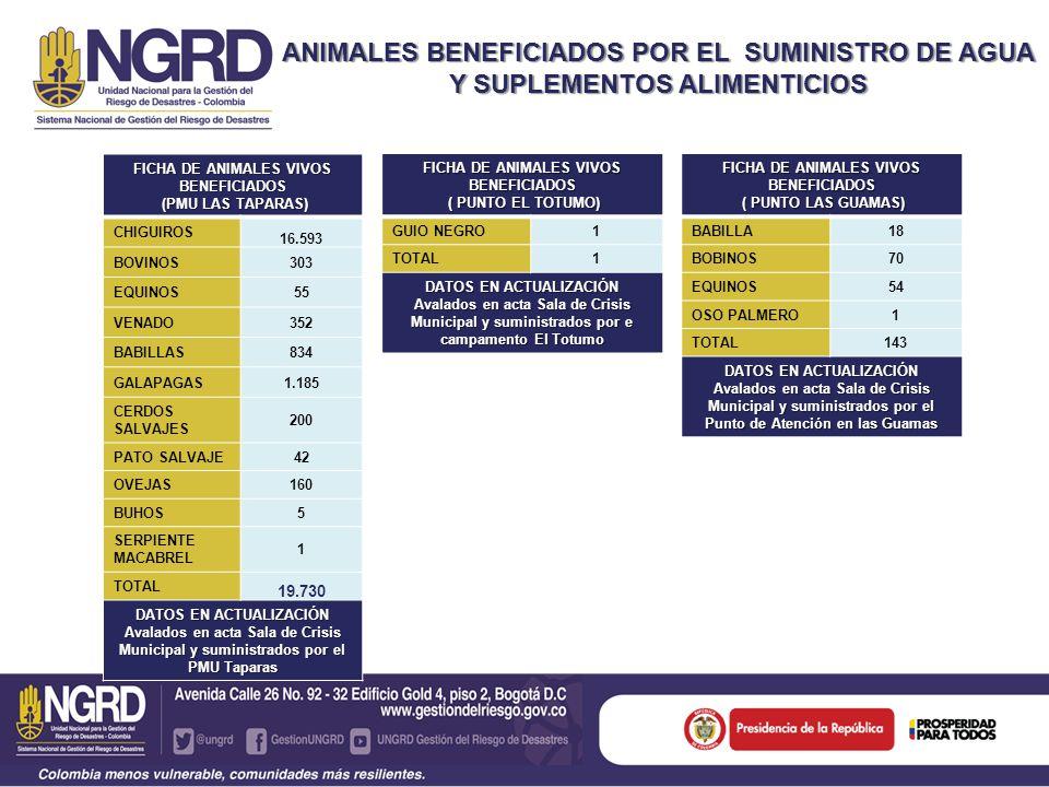 FICHA DE ANIMALES VIVOS BENEFICIADOS ( PUNTO LAS GUAMAS) ( PUNTO LAS GUAMAS) BABILLA18 BOBINOS70 EQUINOS54 OSO PALMERO1 TOTAL143 DATOS EN ACTUALIZACIÓN Avalados en acta Sala de Crisis Municipal y suministrados por el Punto de Atención en las Guamas ANIMALES BENEFICIADOS POR EL SUMINISTRO DE AGUA Y SUPLEMENTOS ALIMENTICIOS FICHA DE ANIMALES VIVOS BENEFICIADOS (PMU LAS TAPARAS) (PMU LAS TAPARAS) CHIGUIROS 16.593 BOVINOS303 EQUINOS55 VENADO352 BABILLAS834 GALAPAGAS1.185 CERDOS SALVAJES 200 PATO SALVAJE42 OVEJAS160 BUHOS5 SERPIENTE MACABREL 1 TOTAL 19.730 DATOS EN ACTUALIZACIÓN Avalados en acta Sala de Crisis Municipal y suministrados por el PMU Taparas FICHA DE ANIMALES VIVOS BENEFICIADOS ( PUNTO EL TOTUMO) ( PUNTO EL TOTUMO) GUIO NEGRO1 TOTAL1 DATOS EN ACTUALIZACIÓN Avalados en acta Sala de Crisis Municipal y suministrados por e campamento El Totumo