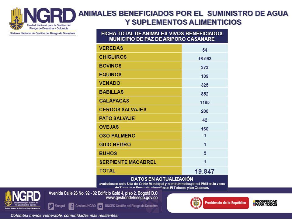 ANIMALES BENEFICIADOS POR EL SUMINISTRO DE AGUA Y SUPLEMENTOS ALIMENTICIOS FICHA TOTAL DE ANIMALES VIVOS BENEFICIADOS MUNICIPIO DE PAZ DE ARIPORO CASANARE VEREDAS 54 CHIGUIROS 16.593 BOVINOS 373 EQUINOS 109 VENADO 325 BABILLAS 852 GALAPAGAS 1185 CERDOS SALVAJES 200 PATO SALVAJE 42 OVEJAS 160 OSO PALMERO 1 GUIO NEGRO 1 BUHOS 5 SERPIENTE MACABREL 1 TOTAL 19.847 DATOS EN ACTUALIZACIÓN avalados en acta Sala de Crisis Municipal y suministrados por el PMU en la zona de Taparas y Punto de atención en El Totumo y las Guamas.
