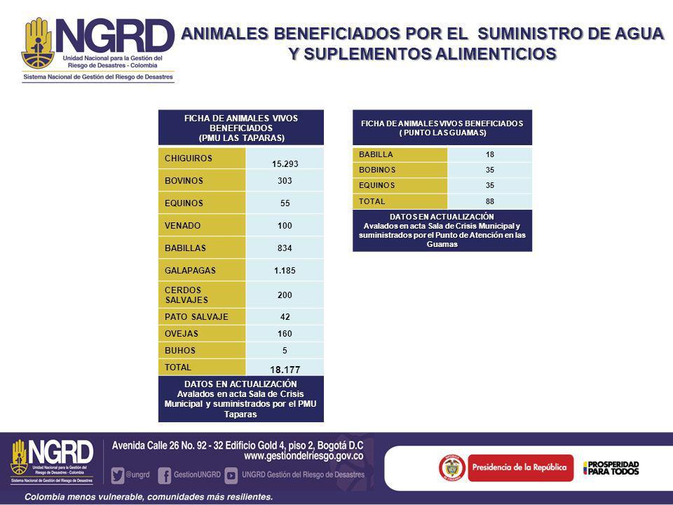 ANIMALES BENEFICIADOS POR EL SUMINISTRO DE AGUA Y SUPLEMENTOS ALIMENTICIOS CAÑO CHIQUITO, CENTRO GAITÀN Y NORMANDÍA FICHA TOTAL DE ANIMALES VIVOS BENEFICIADOS MUNICIPIO DE PAZ DE ARIPORO CASANARE VEREDAS 54 CHIGUIROS 15.293 BOVINOS 338 EQUINOS 90 VENADO 100 BABILLAS 852 GALAPAGAS 1.185 CERDOS SALVAJES 200 PATO SALVAJE 42 OVEJAS 160 BUHOS 5 TOTAL 18.319 DATOS EN ACTUALIZACIÓN avalados en acta Sala de Crisis Municipal y suministrados por el PMU en la zona de Taparas y Punto de atención en El Totumo