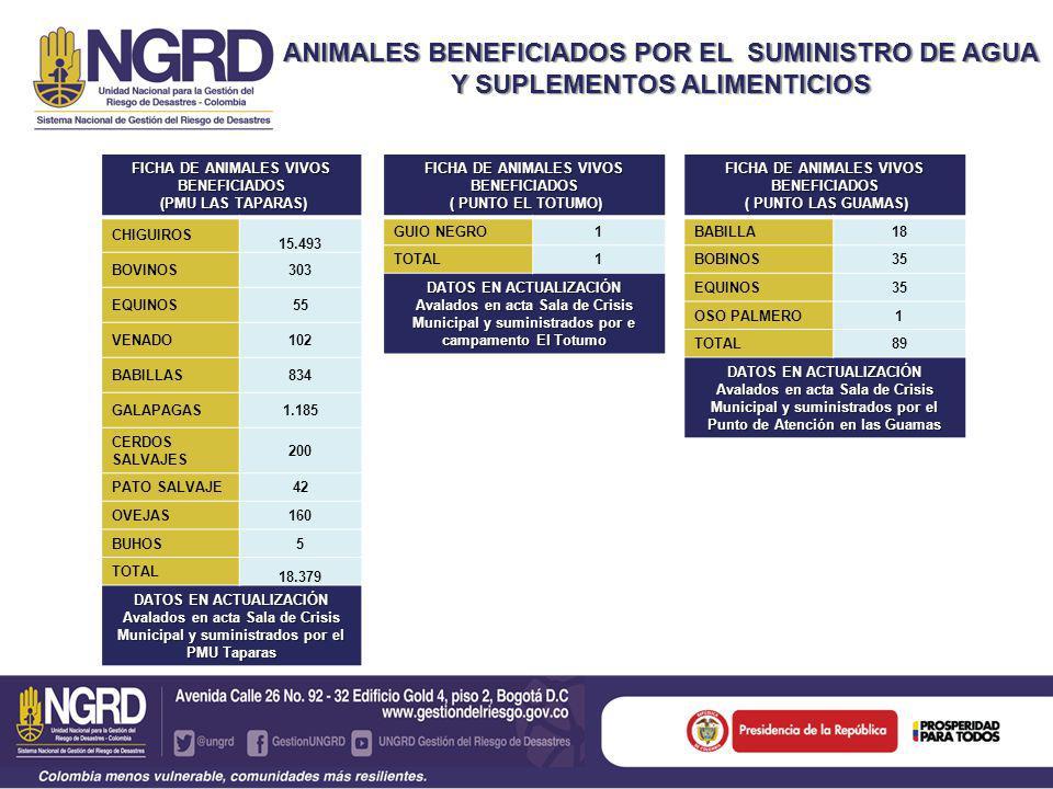 FICHA DE ANIMALES VIVOS BENEFICIADOS ( PUNTO LAS GUAMAS) ( PUNTO LAS GUAMAS) BABILLA18 BOBINOS35 EQUINOS35 OSO PALMERO1 TOTAL89 DATOS EN ACTUALIZACIÓN Avalados en acta Sala de Crisis Municipal y suministrados por el Punto de Atención en las Guamas ANIMALES BENEFICIADOS POR EL SUMINISTRO DE AGUA Y SUPLEMENTOS ALIMENTICIOS FICHA DE ANIMALES VIVOS BENEFICIADOS (PMU LAS TAPARAS) (PMU LAS TAPARAS) CHIGUIROS 15.493 BOVINOS303 EQUINOS55 VENADO102 BABILLAS834 GALAPAGAS1.185 CERDOS SALVAJES 200 PATO SALVAJE42 OVEJAS160 BUHOS5 TOTAL 18.379 DATOS EN ACTUALIZACIÓN Avalados en acta Sala de Crisis Municipal y suministrados por el PMU Taparas FICHA DE ANIMALES VIVOS BENEFICIADOS ( PUNTO EL TOTUMO) ( PUNTO EL TOTUMO) GUIO NEGRO1 TOTAL1 DATOS EN ACTUALIZACIÓN Avalados en acta Sala de Crisis Municipal y suministrados por e campamento El Totumo