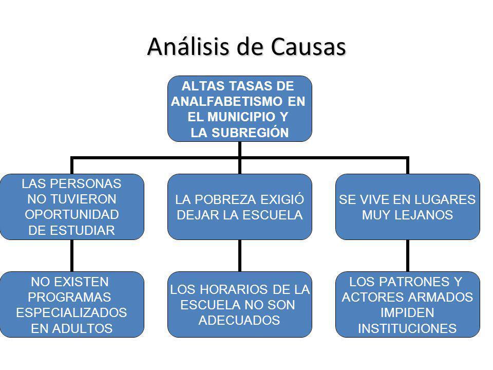 Análisis de Causas ALTAS TASAS DE ANALFABETISMO EN EL MUNICIPIO Y LA SUBREGIÓN LAS PERSONAS NO TUVIERON OPORTUNIDAD DE ESTUDIAR LA POBREZA EXIGIÓ DEJA
