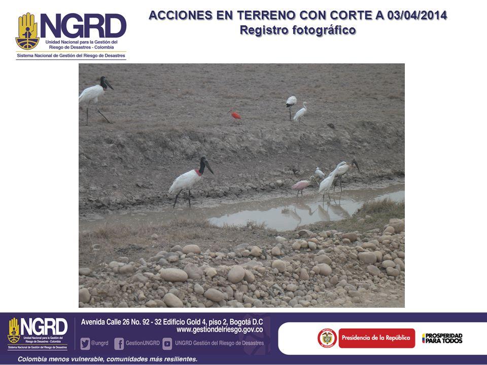 ACCIONES EN TERRENO CON CORTE A 03/04/2014 Registro fotográfico