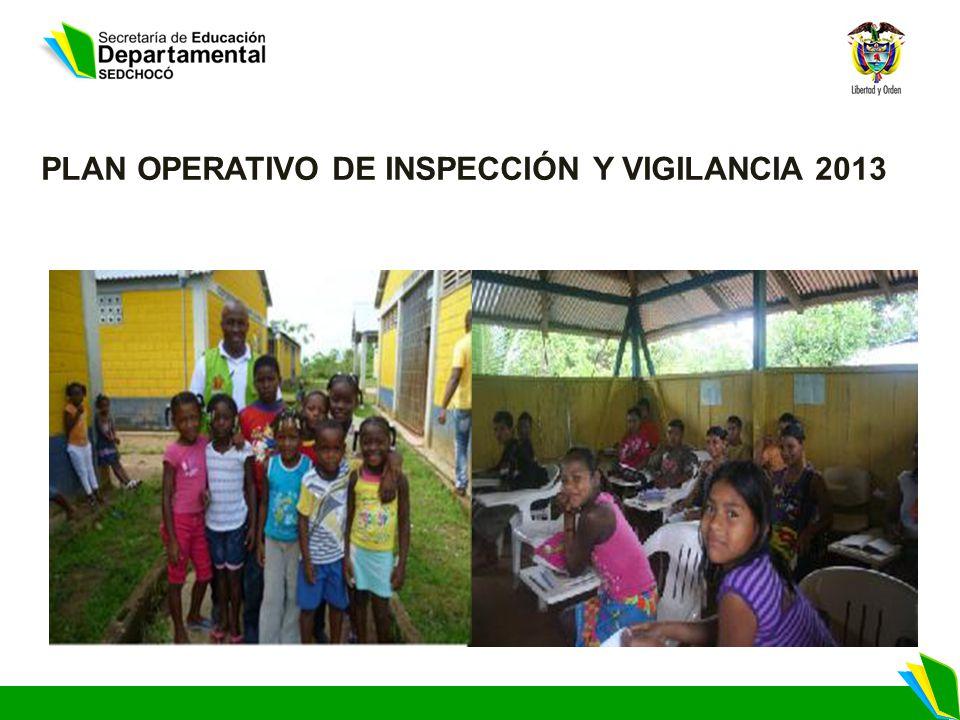 PLAN OPERATIVO DE INSPECCIÓN Y VIGILANCIA 2013