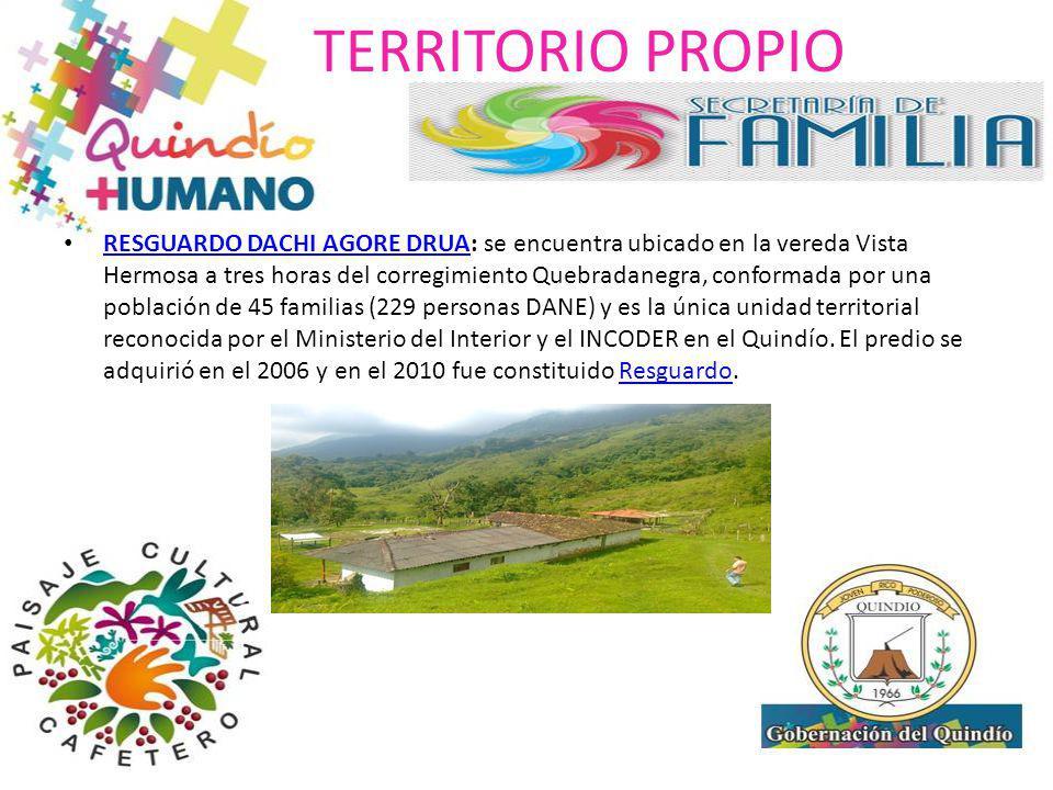 TERRITORIO PROPIO RESGUARDO DACHI AGORE DRUA: se encuentra ubicado en la vereda Vista Hermosa a tres horas del corregimiento Quebradanegra, conformada