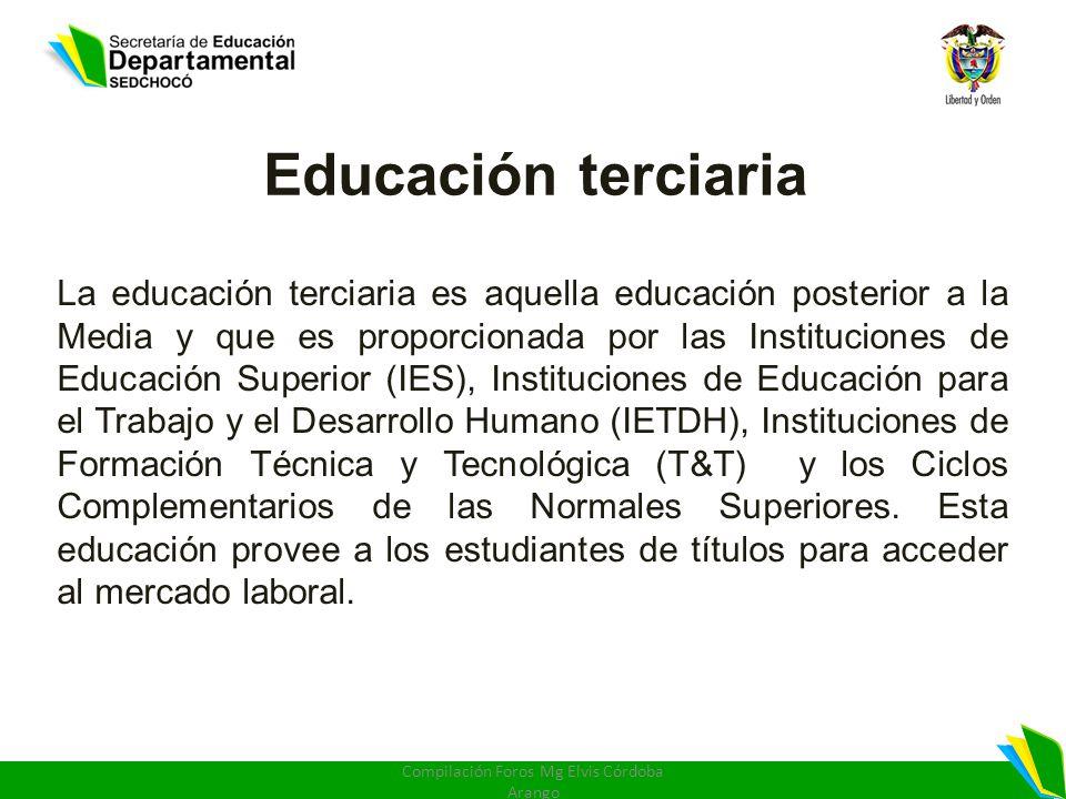 Educación terciaria La educación terciaria es aquella educación posterior a la Media y que es proporcionada por las Instituciones de Educación Superio