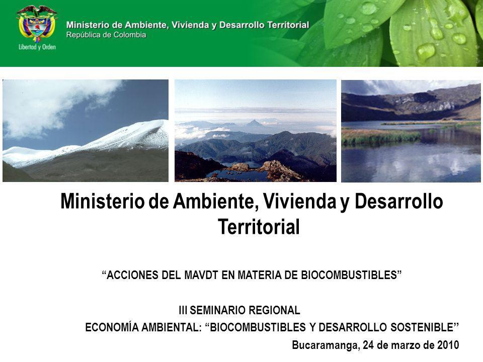 Ministerio de Ambiente, Vivienda y Desarrollo Territorial ACCIONES DEL MAVDT EN MATERIA DE BIOCOMBUSTIBLES III SEMINARIO REGIONAL ECONOMÍA AMBIENTAL: