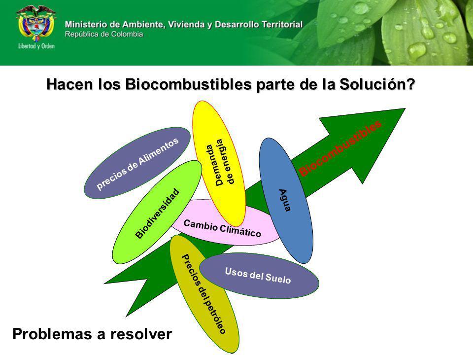 Problemas a resolver Cambio Climático Altos precios del petróleo Pérdida de Biodiversidad Degradación del suelo Demanda de energía Precios del petróle