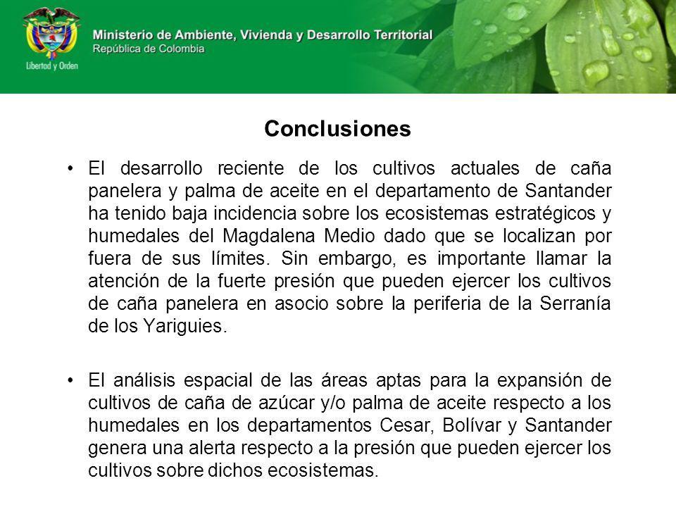 Conclusiones El desarrollo reciente de los cultivos actuales de caña panelera y palma de aceite en el departamento de Santander ha tenido baja inciden
