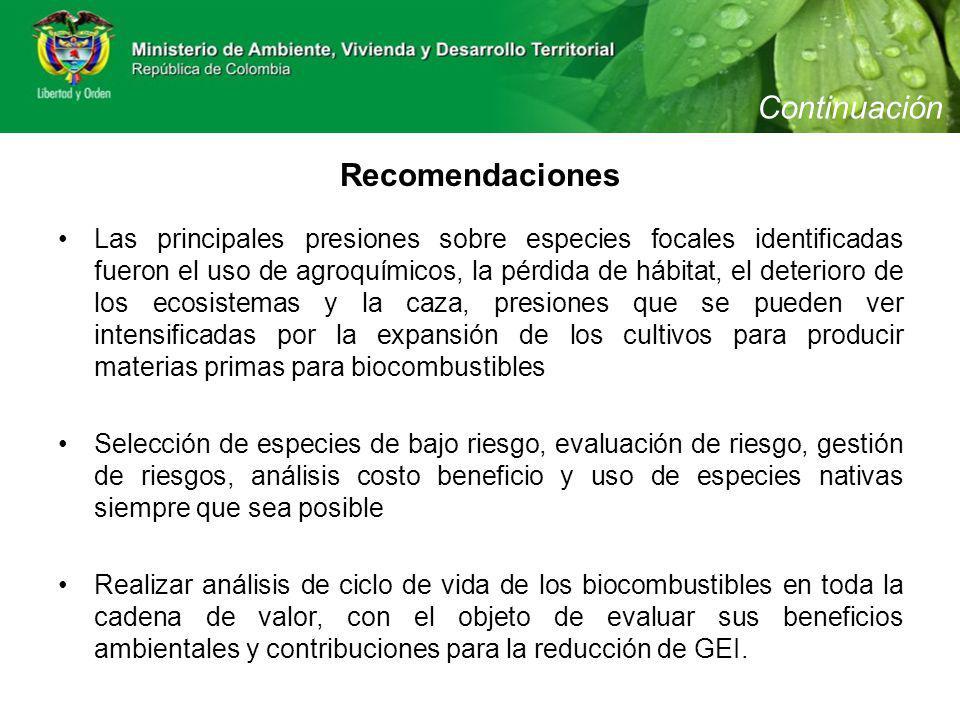 Las principales presiones sobre especies focales identificadas fueron el uso de agroquímicos, la pérdida de hábitat, el deterioro de los ecosistemas y