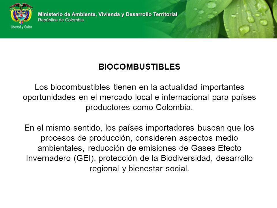 BIOCOMBUSTIBLES Los biocombustibles tienen en la actualidad importantes oportunidades en el mercado local e internacional para países productores como