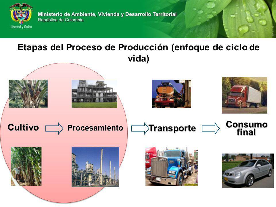 Etapas del Proceso de Producción (enfoque de ciclo de vida) Cultivo Procesamiento Consumofinal Transporte
