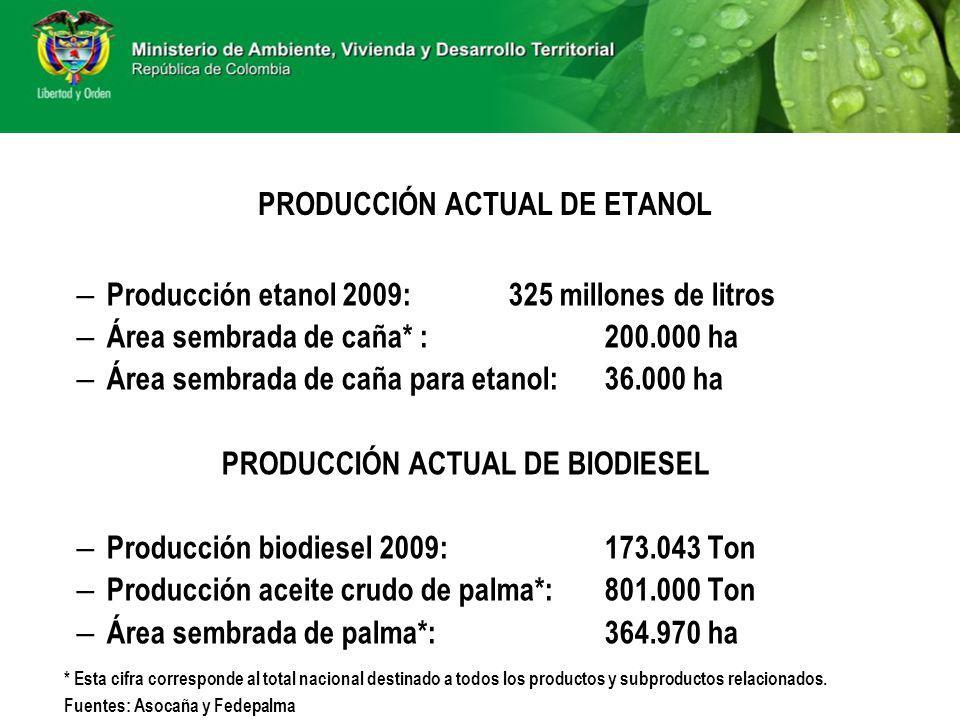 PRODUCCIÓN ACTUAL DE ETANOL – Producción etanol 2009:325 millones de litros – Área sembrada de caña* :200.000 ha – Área sembrada de caña para etanol: 36.000 ha PRODUCCIÓN ACTUAL DE BIODIESEL – Producción biodiesel 2009: 173.043 Ton – Producción aceite crudo de palma*:801.000 Ton – Área sembrada de palma*: 364.970 ha * Esta cifra corresponde al total nacional destinado a todos los productos y subproductos relacionados.