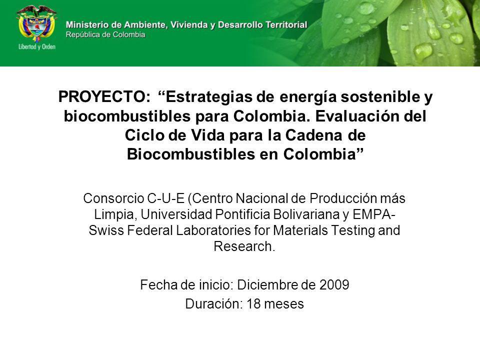 PROYECTO: Estrategias de energía sostenible y biocombustibles para Colombia. Evaluación del Ciclo de Vida para la Cadena de Biocombustibles en Colombi