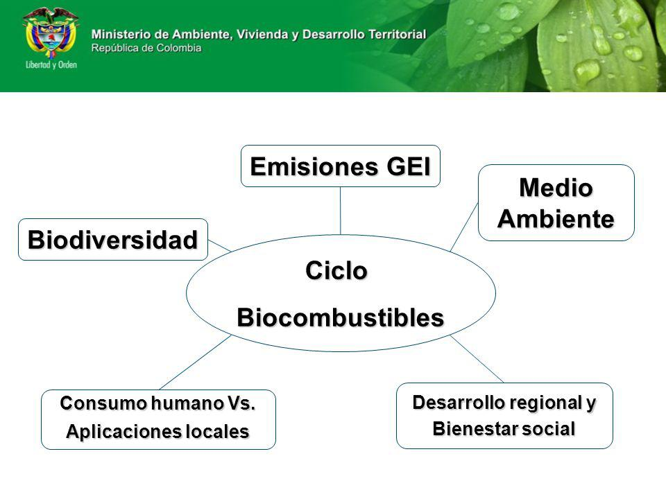 CicloBiocombustibles Biodiversidad Emisiones GEI Emisiones GEI Consumo humano Vs. Consumo humano Vs. Aplicaciones locales Aplicaciones locales Medio A