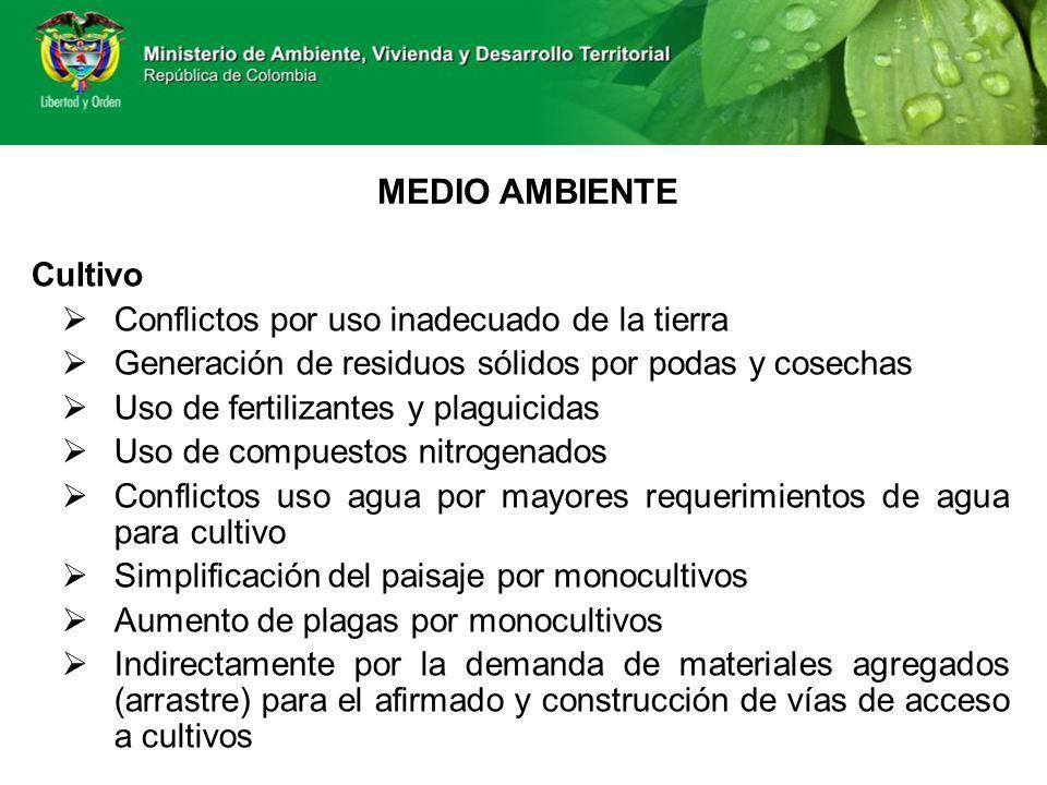 MEDIO AMBIENTE Cultivo Conflictos por uso inadecuado de la tierra Generación de residuos sólidos por podas y cosechas Uso de fertilizantes y plaguicid
