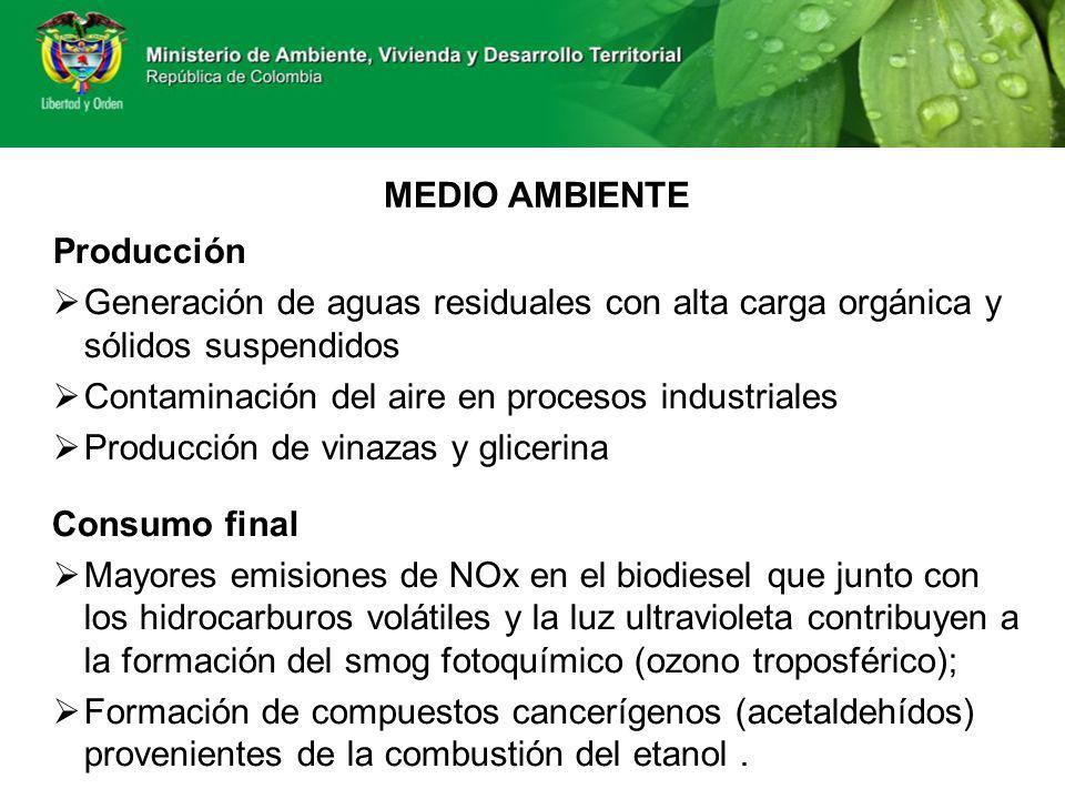 MEDIO AMBIENTE Producción Generación de aguas residuales con alta carga orgánica y sólidos suspendidos Contaminación del aire en procesos industriales