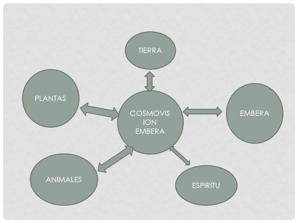 COSMOVIS ION EMBERA PLANTAS ANIMALES ESPIRITU TIERRA EMBERA