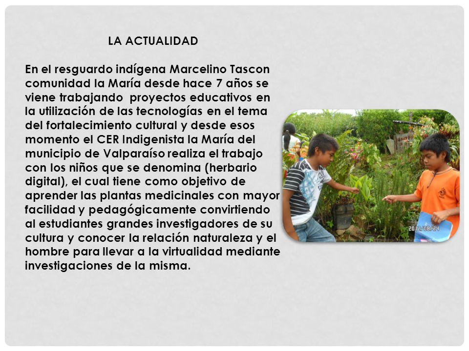 LA ACTUALIDAD En el resguardo indígena Marcelino Tascon comunidad la María desde hace 7 años se viene trabajando proyectos educativos en la utilizació