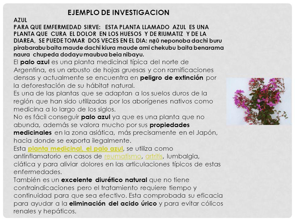 EJEMPLO DE INVESTIGACION AZUL PARA QUE EMFERMEDAD SIRVE: ESTA PLANTA LLAMADO AZUL ES UNA PLANTA QUE CURA EL DOLOR EN LOS HUESOS Y DE RIUMATIZ Y DE LA